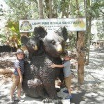 Days out for kids around Brisbane: Lone Pine Koala Sanctuary