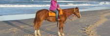 Rainbow Beach horse ride, full moon ride on the beach